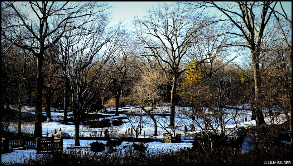 Central Park:  Winter | Fuji 35mm f/1.4 <br> Click image for more details, Click <b>X</b> on top right of image to close
