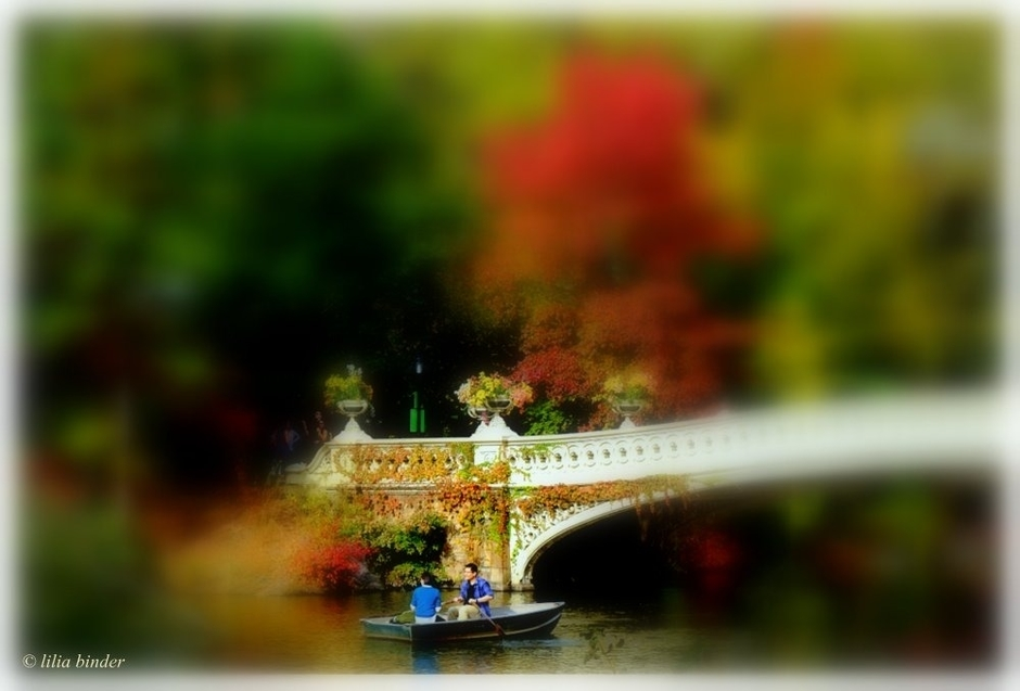 Bow Bridge | Fuji 18-55mm f/2.8 - 4.0 LM OIS <br> Click image for more details, Click <b>X</b> on top right of image to close