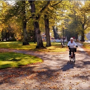 Cycling in the Park | Fuji 18-55mm f/2.8 - 4.0 LM OIS <br> Click image for more details, Click <b>X</b> on top right of image to close