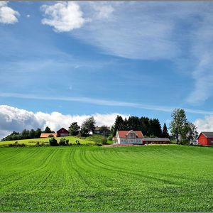Summer over Pastures in Norway | Fuji 18-135mm f/3.5-5.6 <br> Click image for more details, Click <b>X</b> on top right of image to close